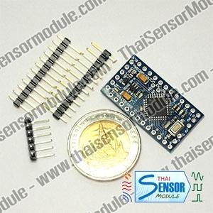 Pro Mini ATmega 328 (Arduino compatible board)